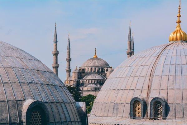 Турция отменяет ПЦР-тесты для туристов: объявлены даты