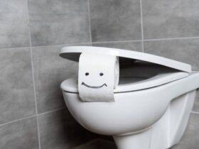 Умный туалет может вскоре анализировать стул на предмет проблем со здоровьем