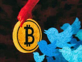 Twitter добавляет биткоин-чаевые, продвигая дальше NFT