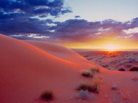 Пустыня из фильма Дени Вильнева «Дюна» .Пустыня Симпсон, Австралия